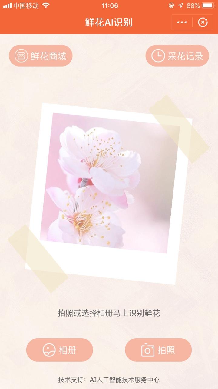 鲜花AI识别小程序截图