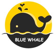 蓝鲸鱼旧物回收