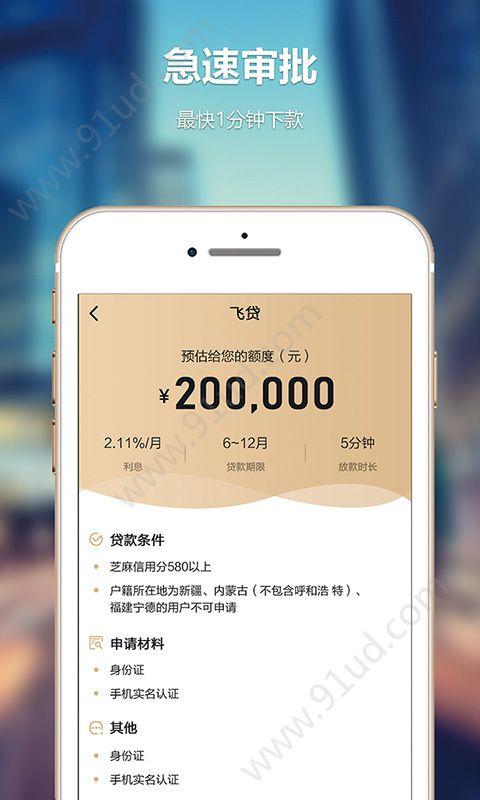 大小手贷款app图3
