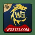wg彩票网