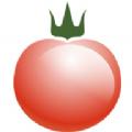 西红柿管家