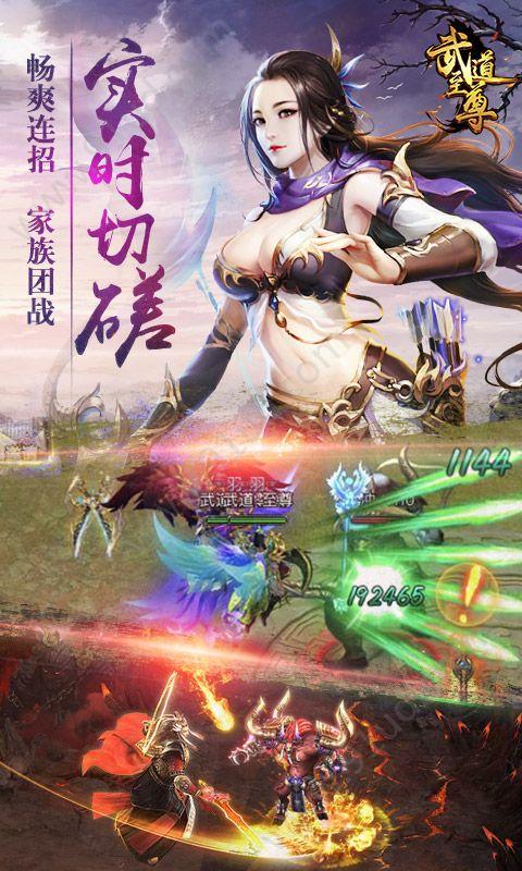 武道至尊bt版图2