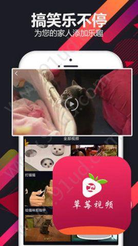 草莓小视频app图1