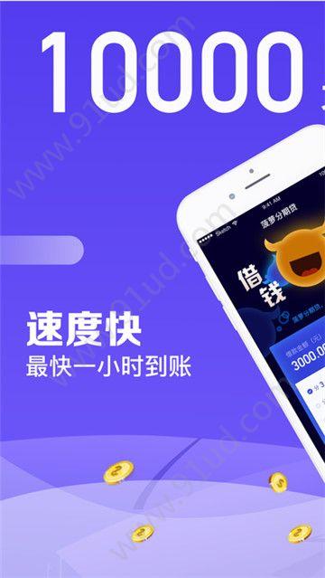 紫薯包app图1
