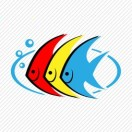 观赏鱼批发零售
