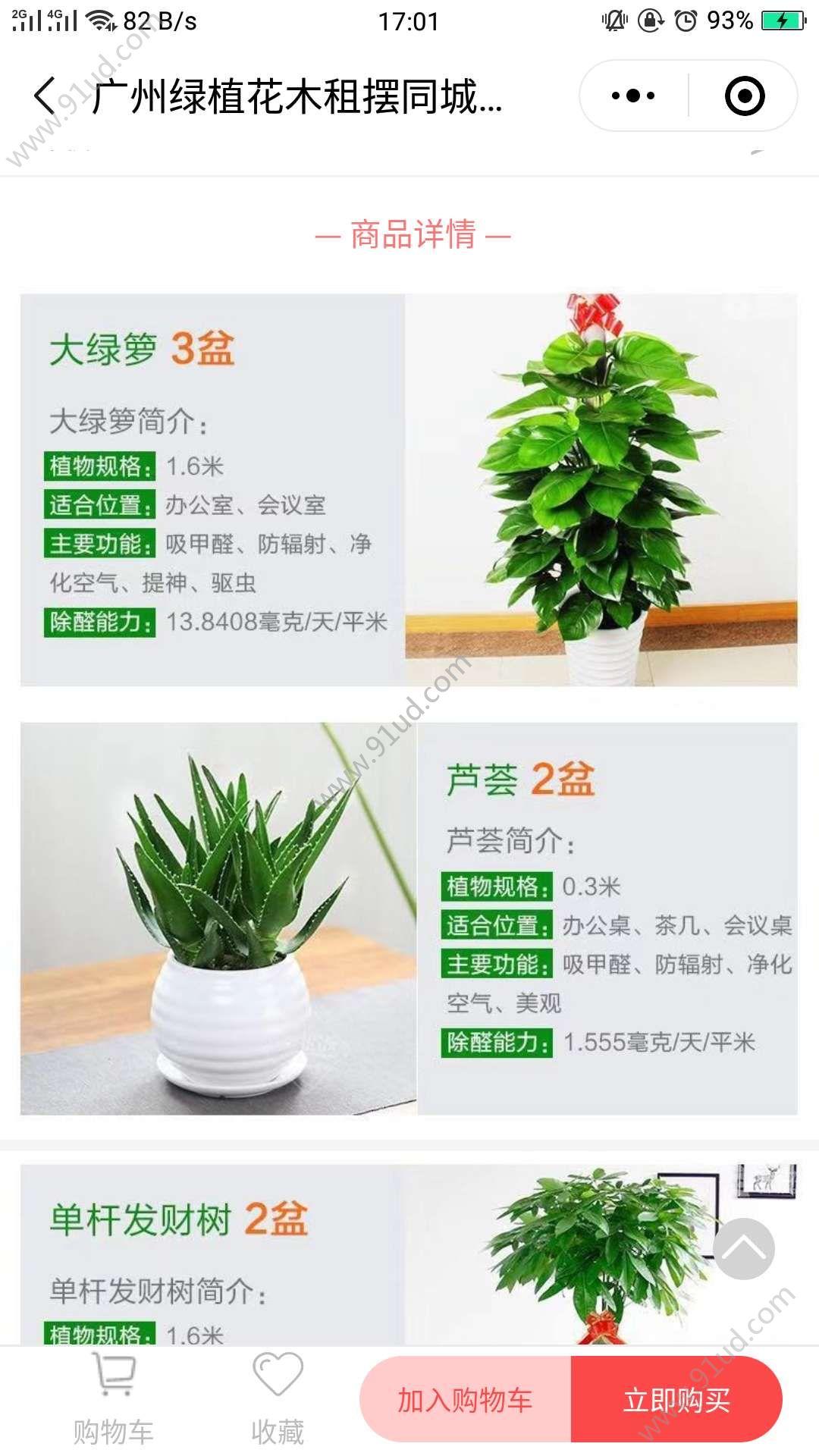 广州绿植花木租摆同城配送小程序截图